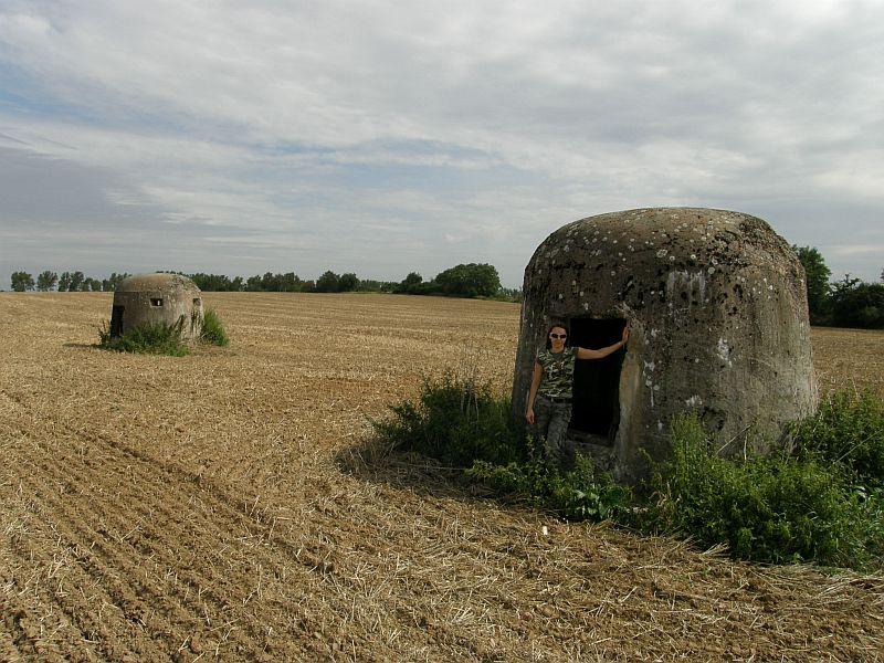 Pniewo - kopuły