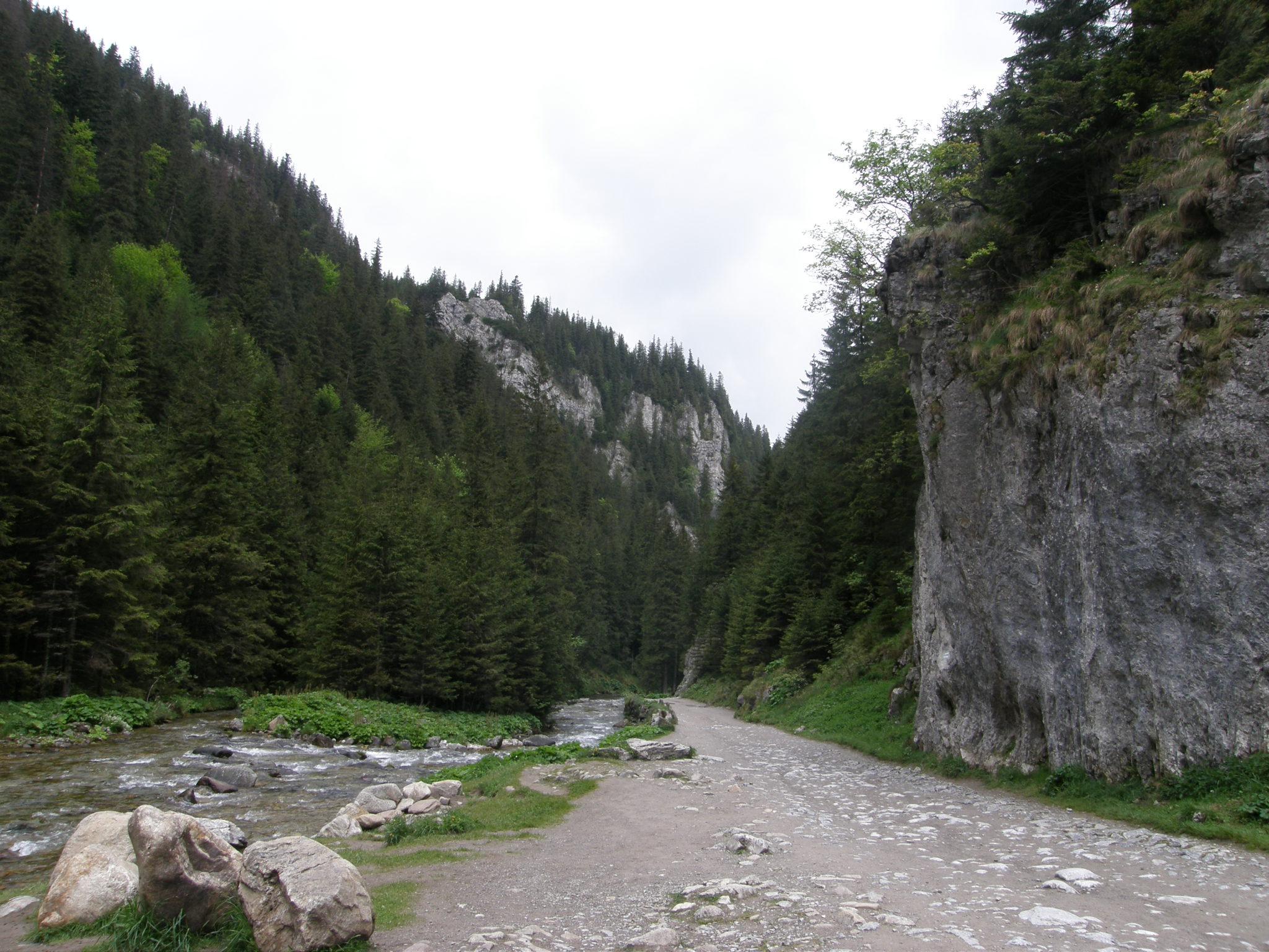 Dolina Kościeliska